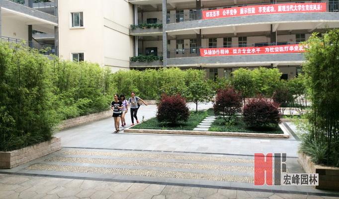 桂林医学院公共教学南楼庭院景观