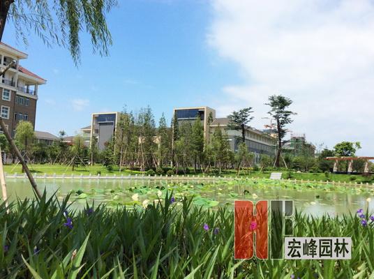 桂林医学院临桂校区荷花塘景观设计