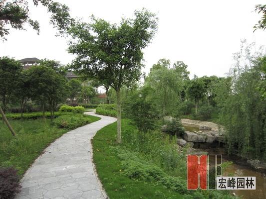 桂林绿化设计
