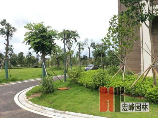 桂林医学院临桂校区临床楼