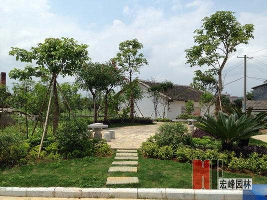伟德国际1964市荔蒲县青山镇岐路村、龙头山村景观改造
